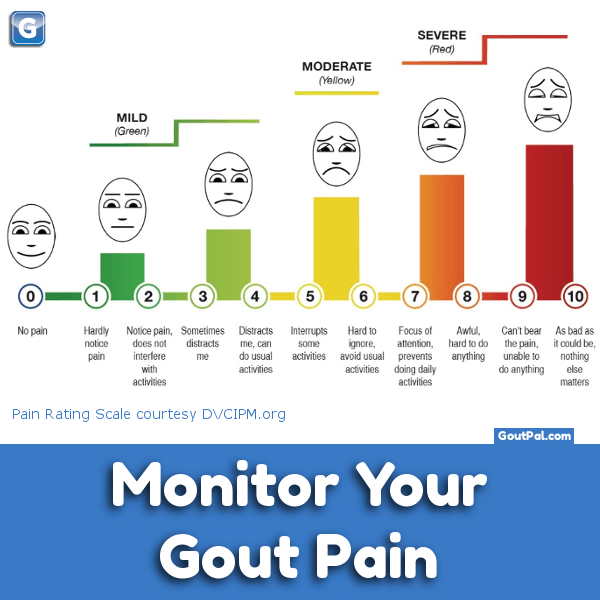 Monitor your Mild Gout Pain