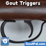 Gout Triggers photo