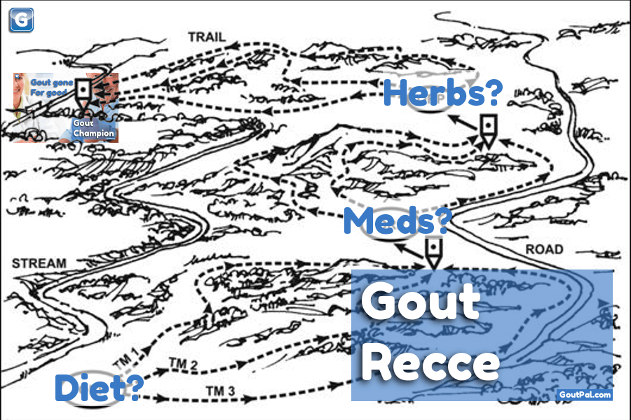Gout Recce Group image