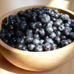Blueberry antioxidants and febuxostat